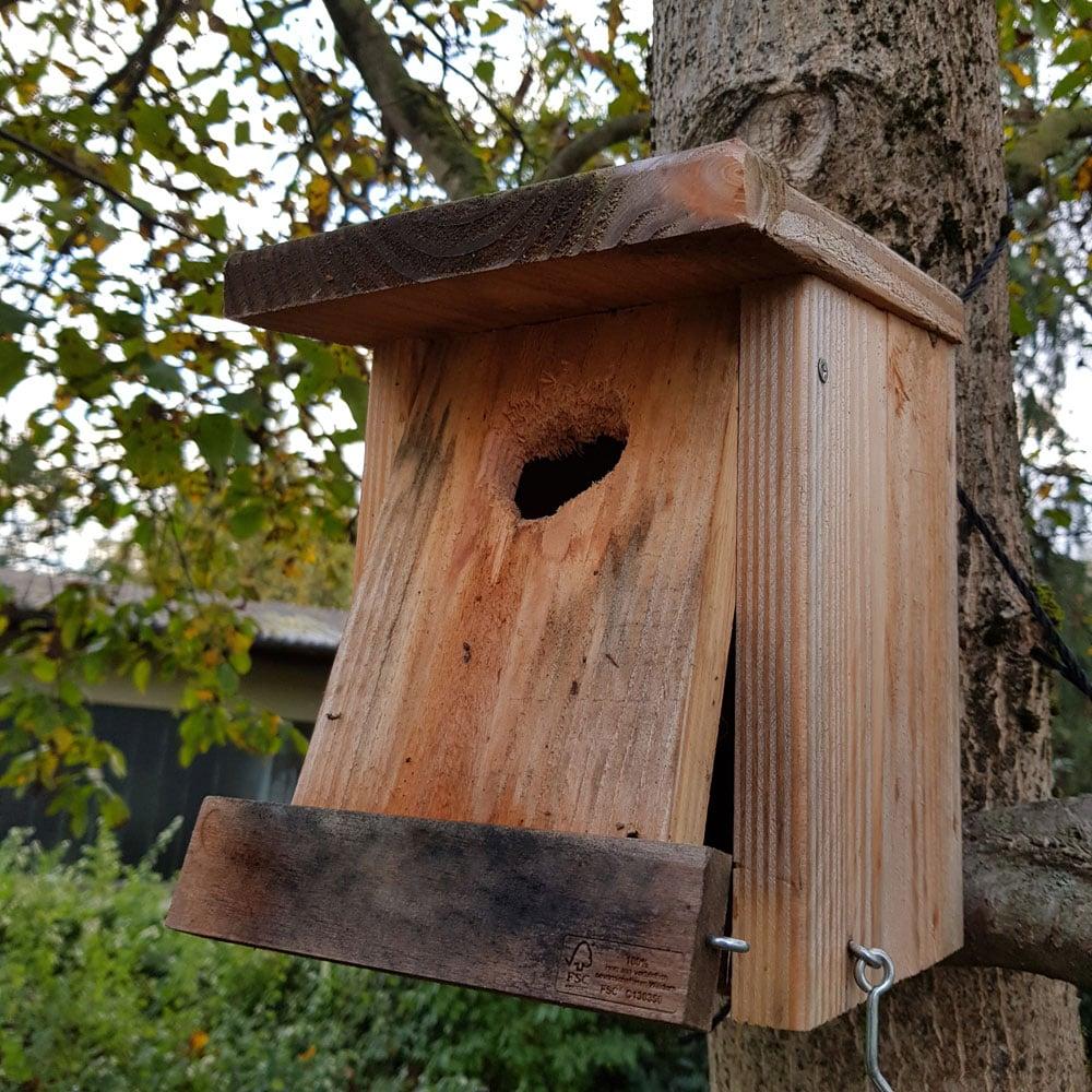 Vogelnistkasten ohne Aufklopfschutz