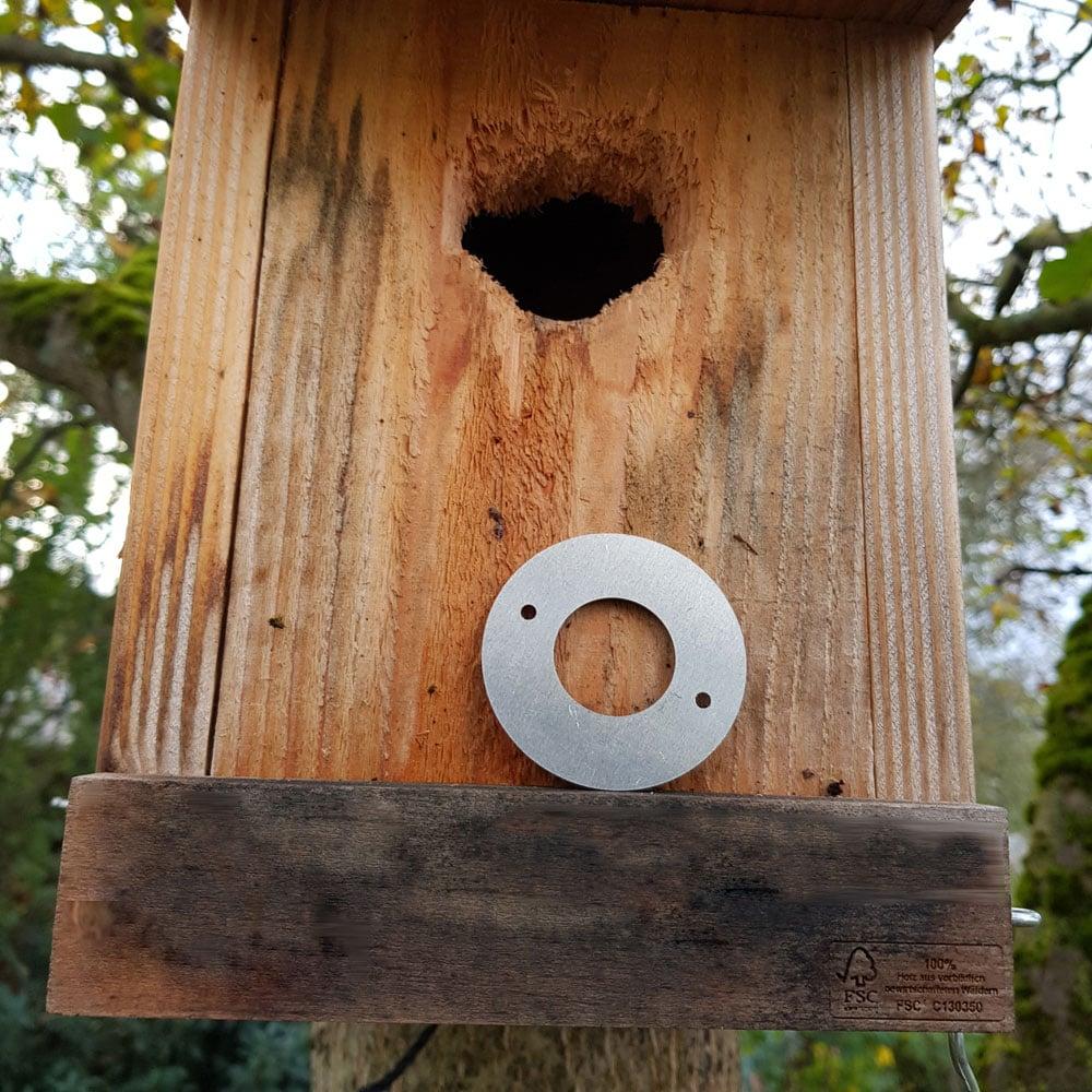 Metallringe als Schutz vor Nesträubern und Spechte
